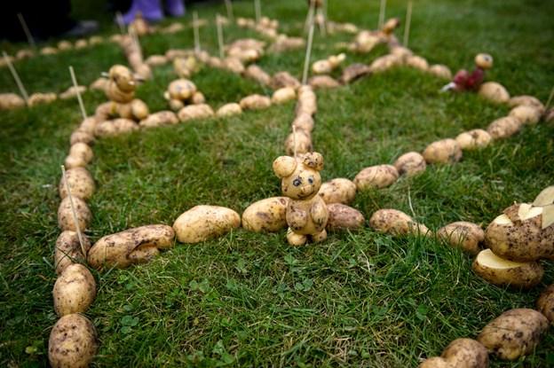 I efterårsferien er der kartoffelfestival på Gård 18. Arkivfoto: Foto: Nicolas Cho Meier