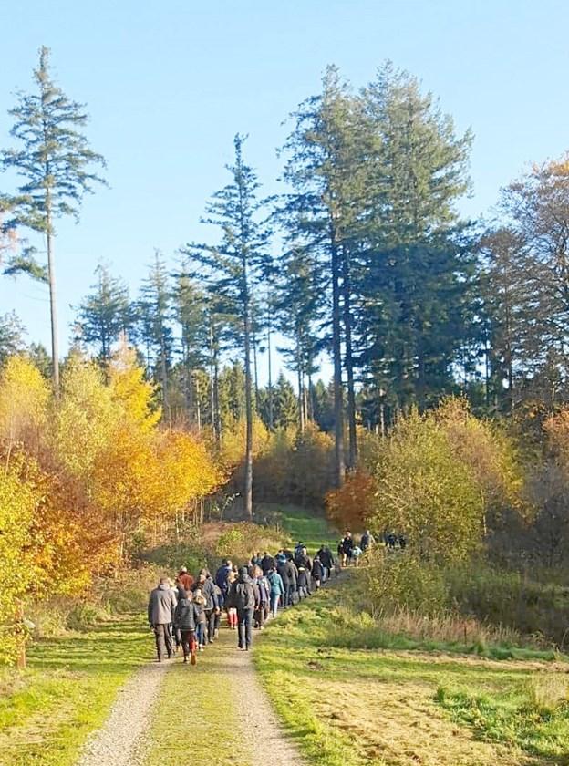 Det var en større slange af børn og voksne, der i weekenden snoede sig igennem Rold Skov.  Privatfoto