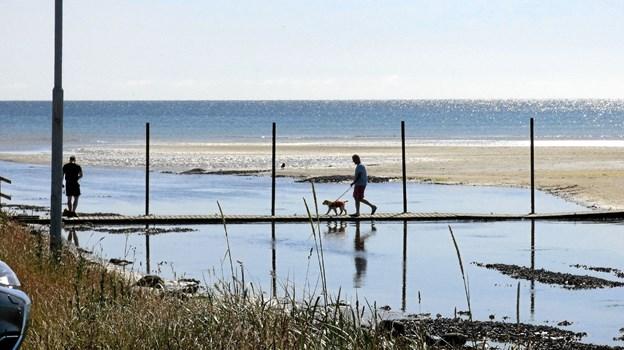 Fra Øster Hurup havns sydmole er der etableret en flydebro til sandtangen, der har en indbydende hvid sandstrand Foto: Ejlif Rasmussen Ejlif Rasmussen