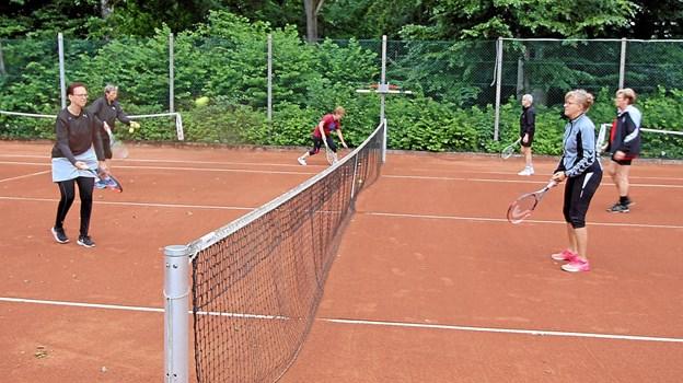 Dronninglund Tennisklub har tidligere meldt ud, at de fik flere medlemmer på grund af Bevæg dig for livet samarbejdet. Arkivfoto: Jørgen Ingvardsen