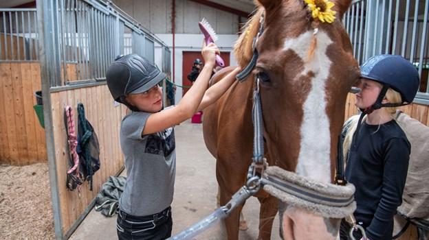 23 børn er i denne uge på sommerskole i Nejst Rideclub.Foto: Kim Dahl Hansen
