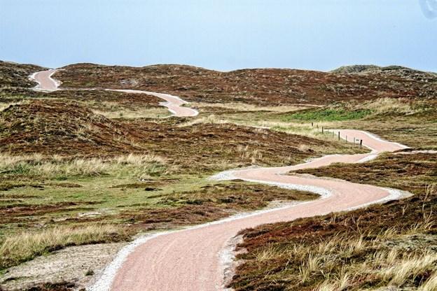 Et simpelt motiv som cykelstien mellem Hanstholm og Vigsø bliver til dette smukke billede af Kristian Amby. Foto: Kristian Amby Ole Iversen