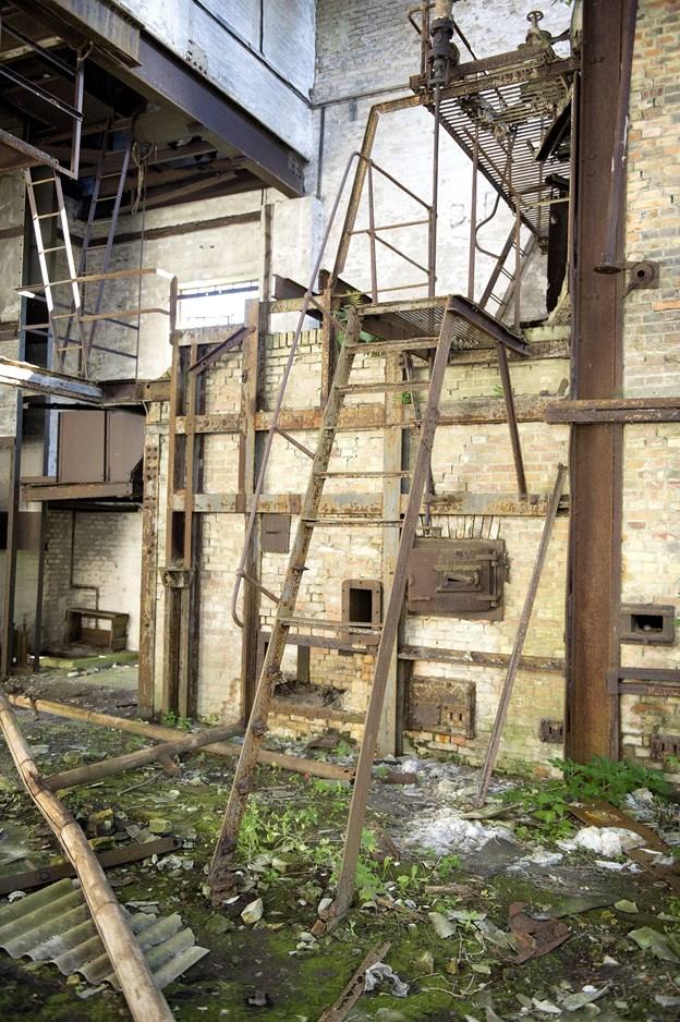 Naturen er kravlet ?indendørs i den ?gamle fabrik.  ?Arkivfoto: Henrik Bo