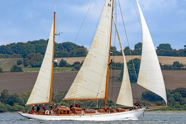 Der forventes op mod 50 fartøjer til sommerstævnet Picasa