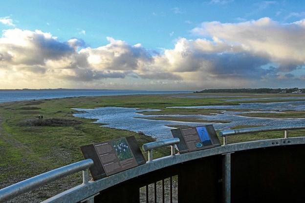 Der er en smuk udsigt fra toppen af tårnet og man kan se vidt omkring. Foto: Hans B. Henriksen