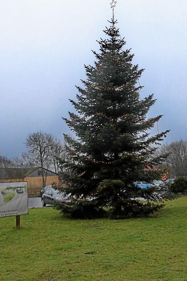 Så blev træet tændt. Foto: Ole Nielsen Ole Nielsen