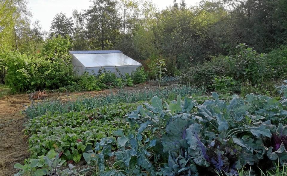 Permakultur er en vedvarende dyrkning af jord. Privatfoto