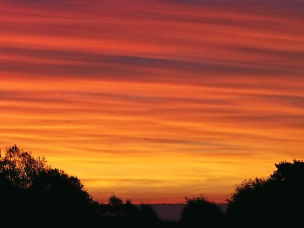 Solopgang med Thise bakker i baggrund. Foto: Thomas Ring Carlsen