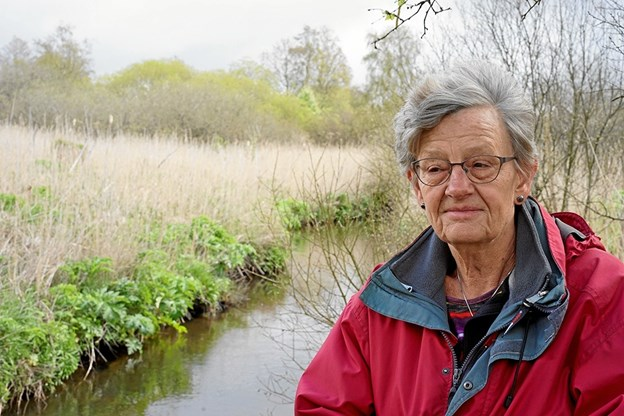 Ellen Poulsen fra Danmarks Naturfredningsforening har arrangeret nattergaleture i 14 år. Nu frygter hun, at det er ved at være sidste udkald, hvis man vil høre den smukke, særprægede sang. Privatfoto: Sten Søndergaard