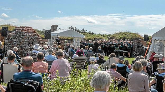 Smuk dag i smukke omgivelser i kirkeruinen på Vitskøl Kloster. Foto: Mogens Lynge Mogens Lynge