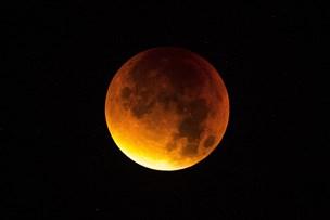 Orangerød måne mandag morgen hvis vejret ikke driller