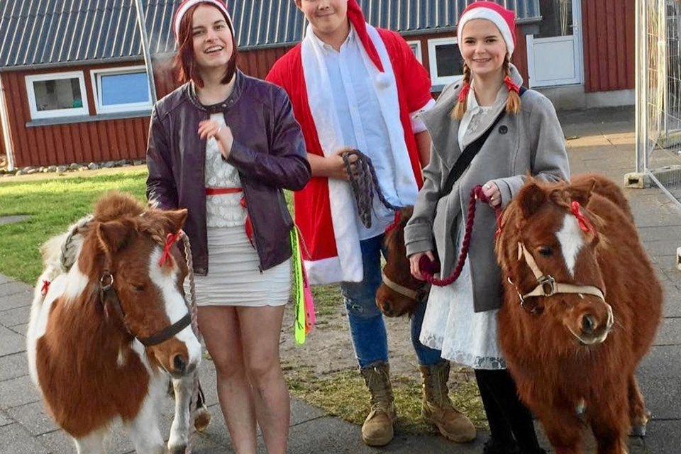 Hobro Efterskole på Mariagervej 66 holder julemarked på søndag. Privatfoto