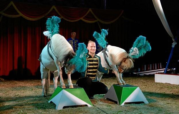 De søde ponyer er klar til nye kunster i manegen.