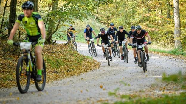 Forskningsprojekt henvender sig til moderat trænede cykelryttere og triatleter. Arkivfoto: Peter Broen