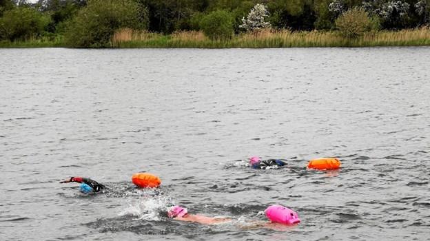 Otte medlemmer af foreningen 24 timer i Hjallerup var forleden på prøvesvømning i Teglværkssøerne. Medlemmerne forberedte sig på familiearrangementet samme sted den 10. august. Privatfoto