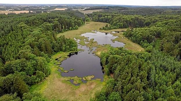 Sømosen ved Dronninglund som den ser ud i dag. I mosen var der tørvejord velegnet til tørvegravning, så lokalbefolkningen havde brændsel. Desværre svinder vandarealet ind år for år på grund af tilgroning.Foto: Dronefoto - VisitBrønderslev