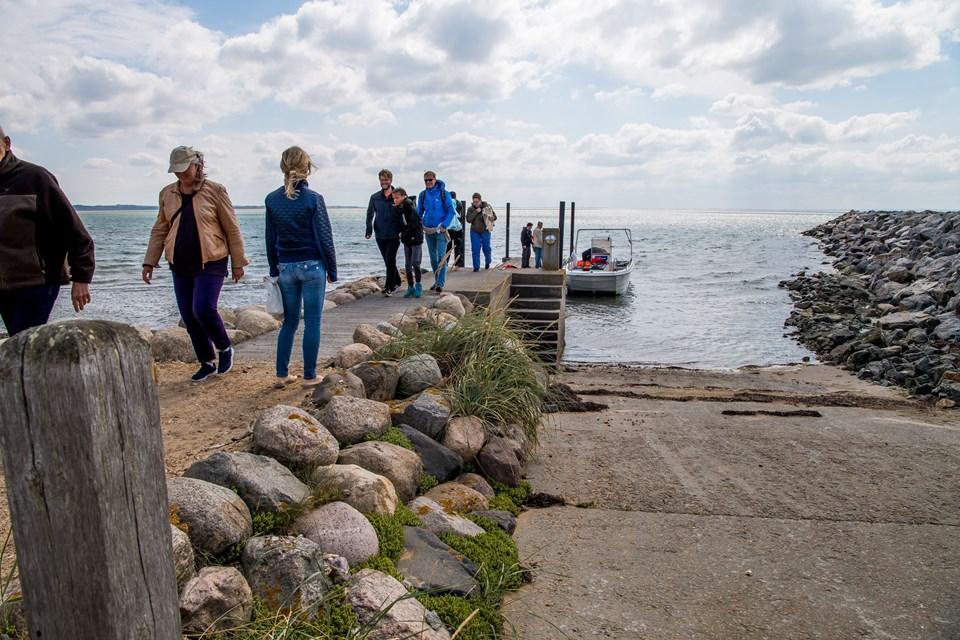 Sidste år gik turene fra havnen i Agger, men det gav nogle lange sejlture ud til holmene. Nu går turene hver tirsdag og onsdag i juli og august fra Agger Tange, hvor man gerne vil være fremadrettet.