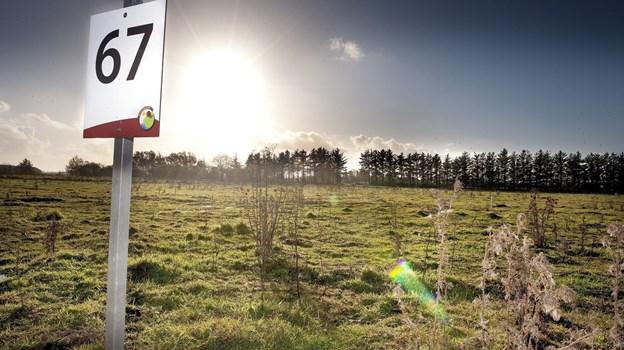 Seks ud af syv unge fraflyttere vender nemlig ikke tilbage til Hjørring, inden de er 33 år. Det er færre end i nabokommuner som Jammerbugt og Brønderslev. Arkivfoto: Bente Poder