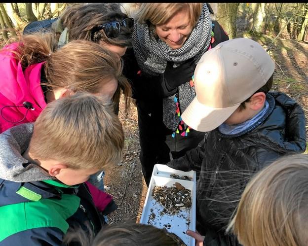 De engelske gæster fik blandt andet et indblik i udeundervisning i biologi. Privatfoto