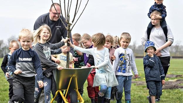 Børnene ville gerne have lov til at blive kørt rundt på området i trillebøren af Søren Pedersen, men det var altså træerne og ikke børnene, der skulle transporteres rundt. Foto: Bent Bach BENT BACH