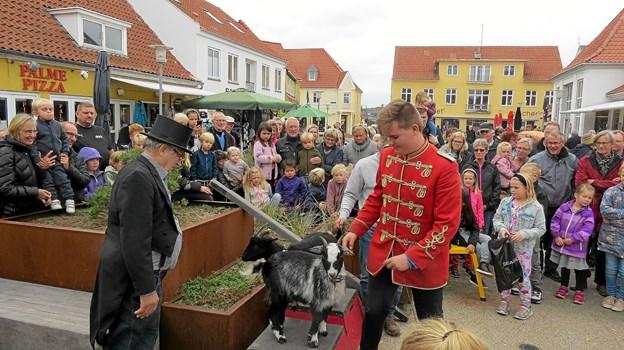 Cirkusgården Løkken havde et lille show med gæs og geder. Det var ikke mindst populært da børnene bagefter fik lov at klappe dyrene. Foto: Kirsten Olsen