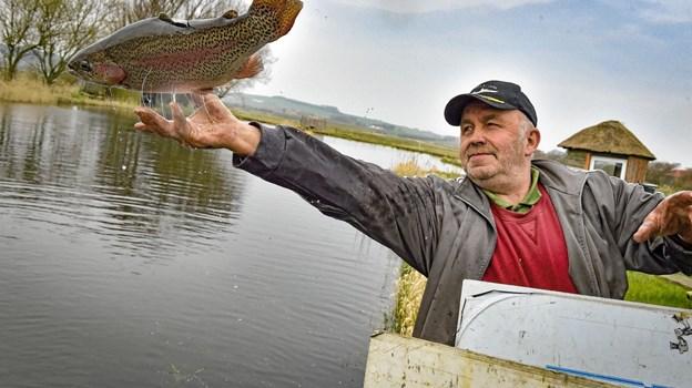 Verner Christensen satte de første 100 kilo lakseforeller eller regnbueørreder, ud Snedsted Fiskesø. Foto: Ole Iversen