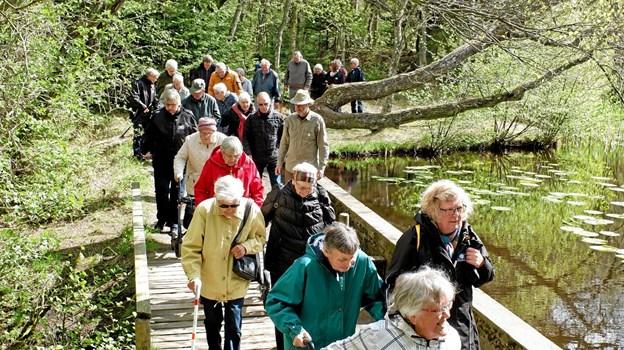 På udflugten til Tversted Klitplantage oplevede selskabet de smukke søer, hvor de gik rundt om den største. Foto: Niels Helver Niels Helver