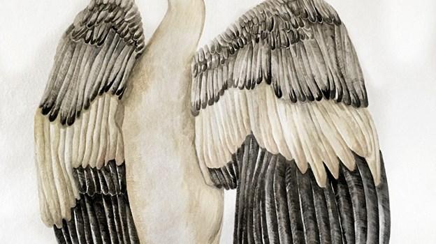 Rikke Jacobsen udstiller akvareller. Privatfoto