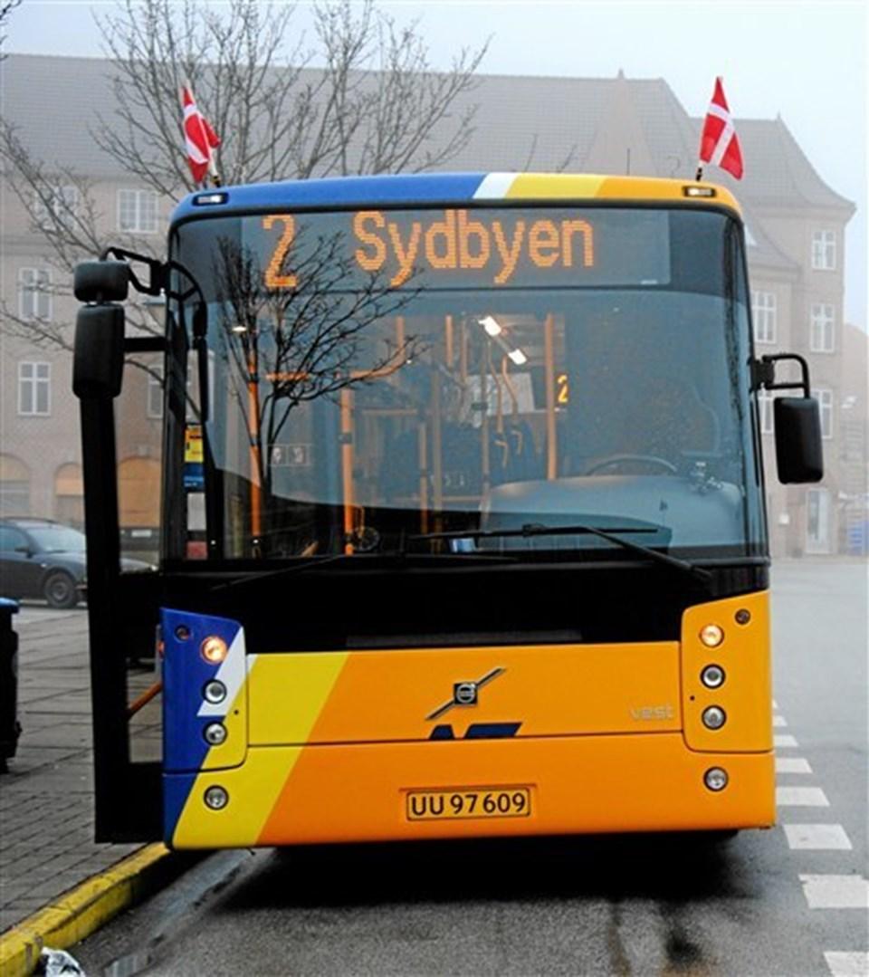 Busserne er klædt på til fest. Foto: Jerslev Fotoklub.