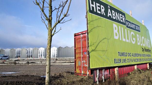 458a3583d5d BilligBlomst i City Syd er ved at tage form, åbningen er planlagt til 12.