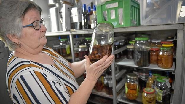 Nationalparken på glas i klar vodka. Henny og kroens personale laver i dag hundredvis af syltede ting fra naturen, som ender som tilbehør på tallerkener. Her er det hasselnødder. Ole Iversen