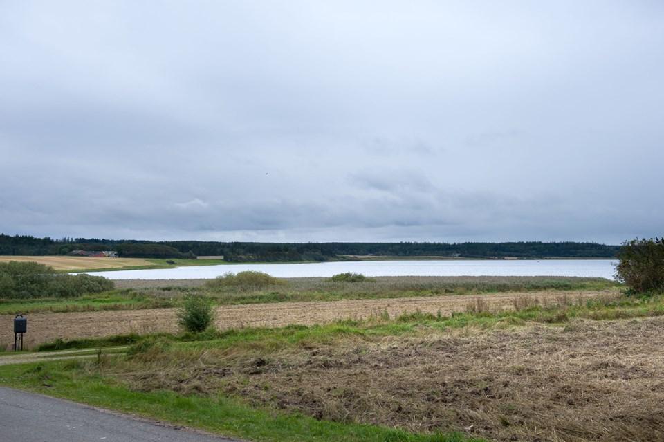 Østenden af Vandet Sø er udlagt til surf - og nu er der udsigt til en løsning, så der også bliver adgang til vandet. Foto: Bo Lehm