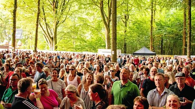 »Jammerbugtens fedeste havefest« foregår under de lysegrønne bøgetræer på Dyrskuepladsen i Fjerritslev lørdag 3. august. Sidste år løste omkring 3.600 billet til musikfestivalen. Foto: VesterhavsRock
