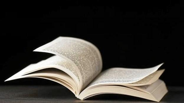 Fire gange her i starten af 2019 læses der højt på bibliotekerne i hhv. Hobro og Hadsund. Privatfoto