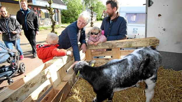 På Landbo Nords stand kunne man klappe en kalv i fred og ro. Foto: Jørgen Ingvardsen Jørgen Ingvardsen