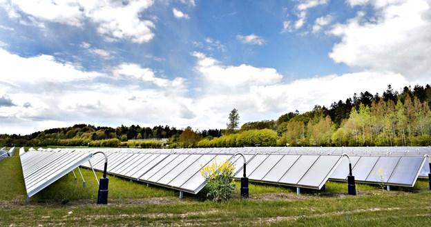 I forvejen har Dronninglund Fjernvarme et stort solvarmeanlæg, men det skal nu suppleres af et varmepumpeanlæg. Arkivfoto: Bent Bach