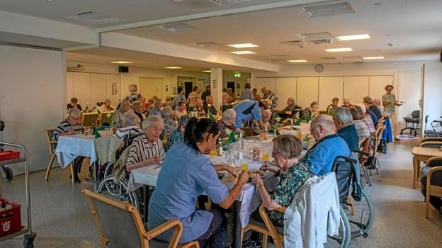 Der var lækker middag med forloren hare og citronfromage og musik til spisningen. Foto: Mogens Lynge