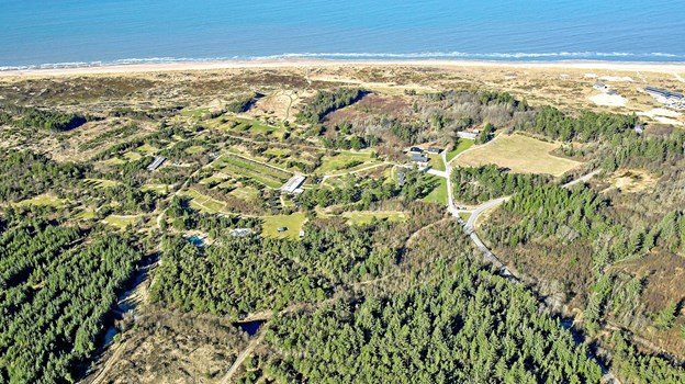 Svinkløv Camping er sat til at indbringe minimum 9,5 millioner kroner. Foto: Esoft