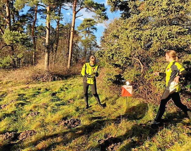 Det milde og solrige vintervejr gjorde naturligvis ikke humøret dårligere hos de 95 deltagere i Mariager Fjord OKs nytårsløb. ?Privatfoto: Keld Østergaard, Mariager Fjord OK