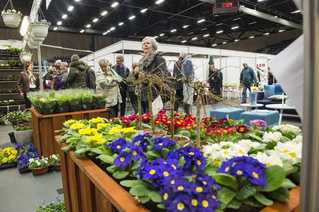 Forårsmessen i Arena Nord plejer at byde på blomster i rigt antal. Arkivfoto: Peter Broen