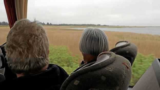 Udsigten over Vejlerne nydes. Foto: Niels Helver Niels Helver