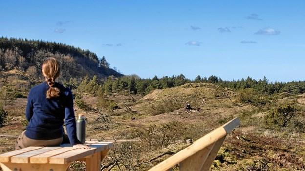 Jammerbugt Kommune har sammen med lodsejerne ved Bulbjerg og Slettestrand skabt en unik mulighed for, at området bliver endnu mere fantastisk at bevæge sig i for alle dem, der gerne vil have en helt unik naturoplevelse - der er med andre ord lagt an til en ægte turistsucces. Privatfoto