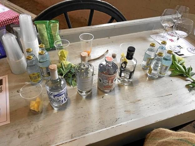 Gin er stadig en populær drik, og det kommer også til at præge optakten årets Rock i Frederikshavn. PR-foto