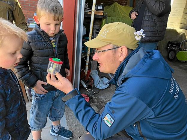 Naturvejleder Søren Krag fortæller om en indfanget kålsommerfugl, som dog blev sluppet løs igen. Foto: Anna. G. Worm