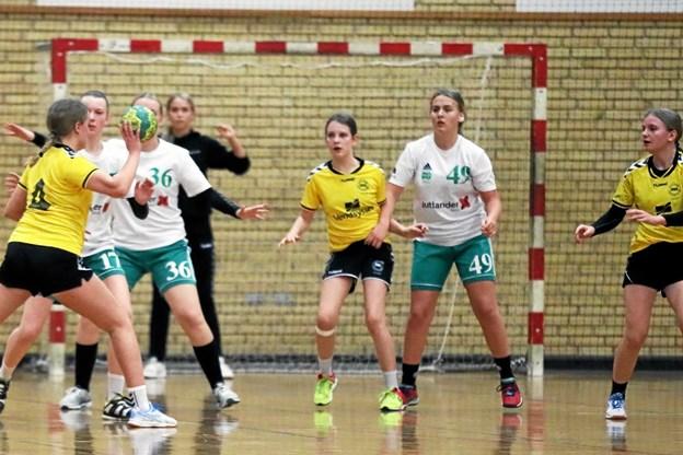 VHG-pigerne i gule bluser måtte til sidst se sig besejret af rækkens tophold fra Aars HK. Foto: Allan Mortensen