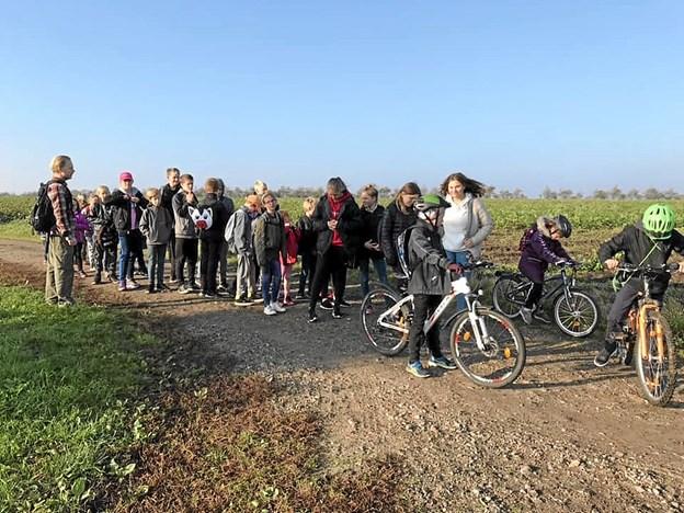 Eleverne fra Overlade Friskole på deres egen pilgrimsrejse til Vilsted Sø. Privatfoto