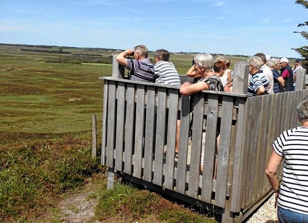 Hanstholm Vildreservat blev studeret fra udkigstårnet, da et halvt hundrede gæster fra Biecentret i Hobro var på besøg.?Privatfoto