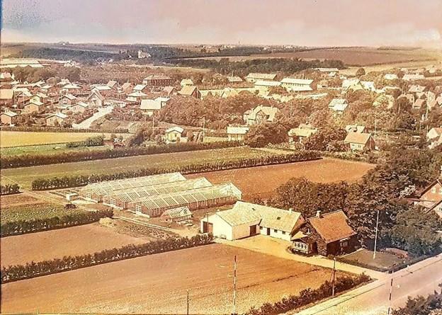 Luftfoto fra 1959 med Hobrovej i forgrunden og der hvor de 2 bagerste drivhuse ligger finder vi i dag Cypresvej. Foto: Karl Erik Hansen Karl Erik Hansen