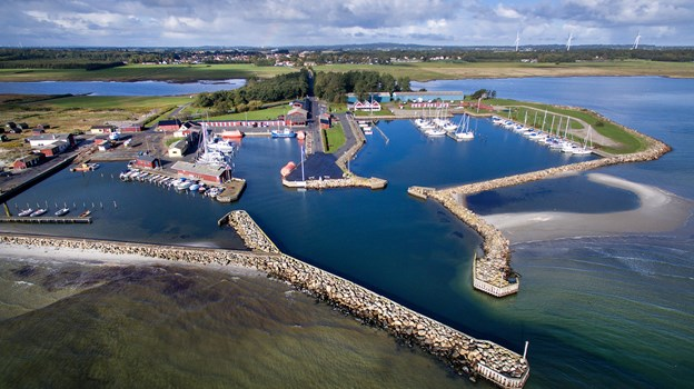 Asaa Havn håber på en bevilling på 250.000 årligt til oprensningen af havnen.  Arkivfoto: Hans Ravn