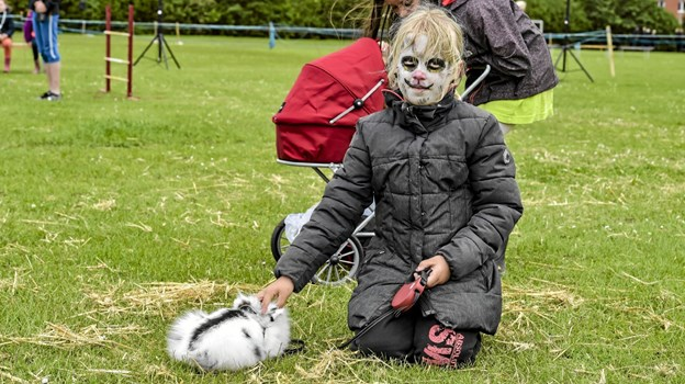 Emma Svendsen Pedersen fra Nors havde sin Løvehovedkanin med til fremvisning til børnedyrskuet. Foto: Ole Iversen Ole Iversen